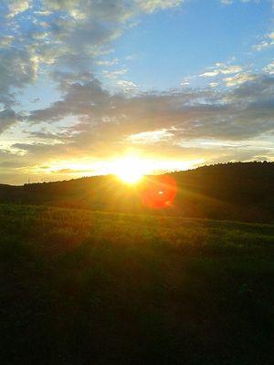 Смс с добрым утром, пожелания доброго утра